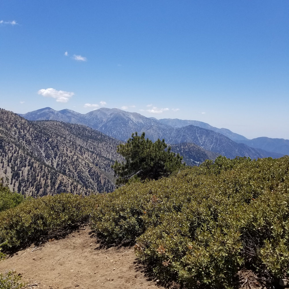 Looking over at Mount Baldy.