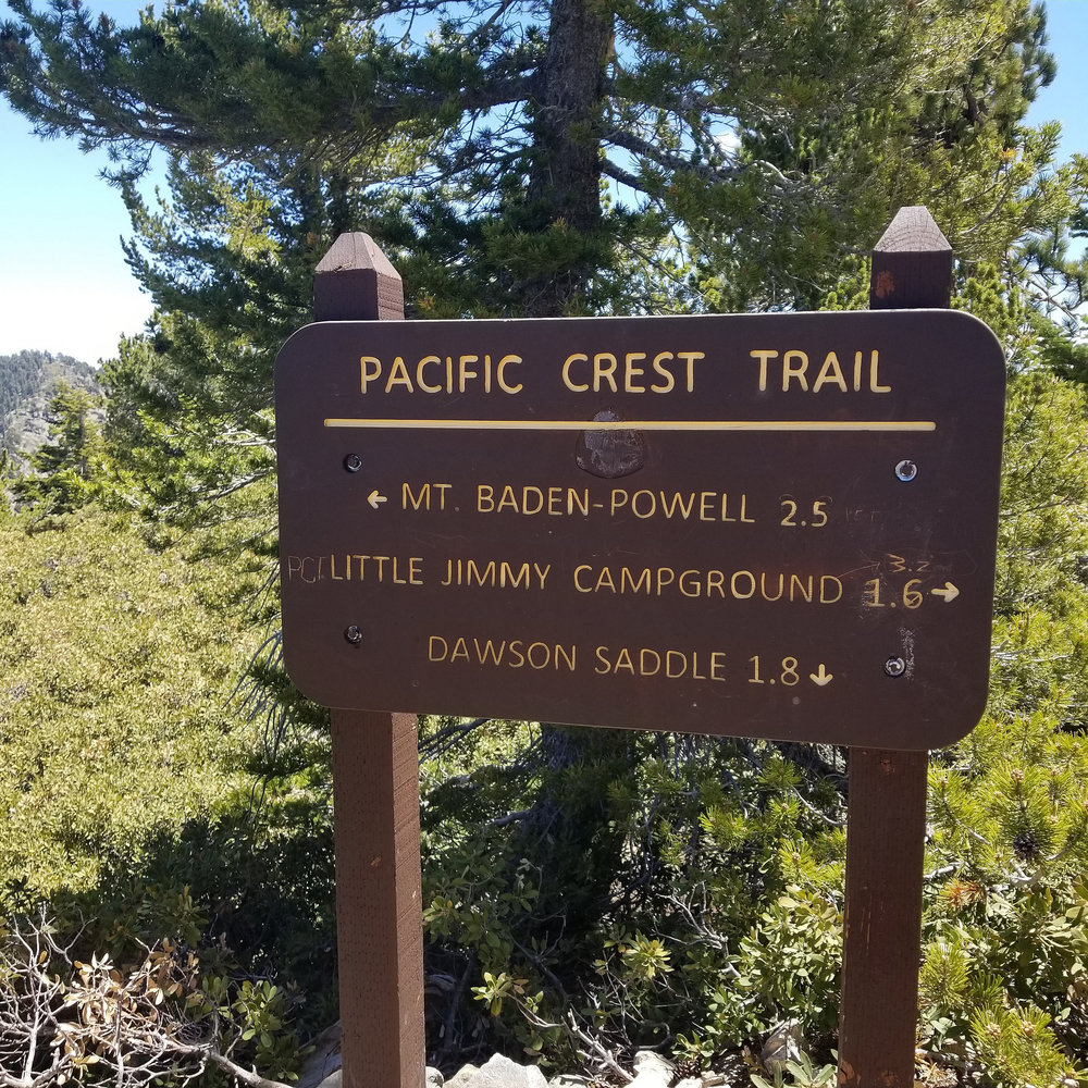 Back at the junction with the PCT.