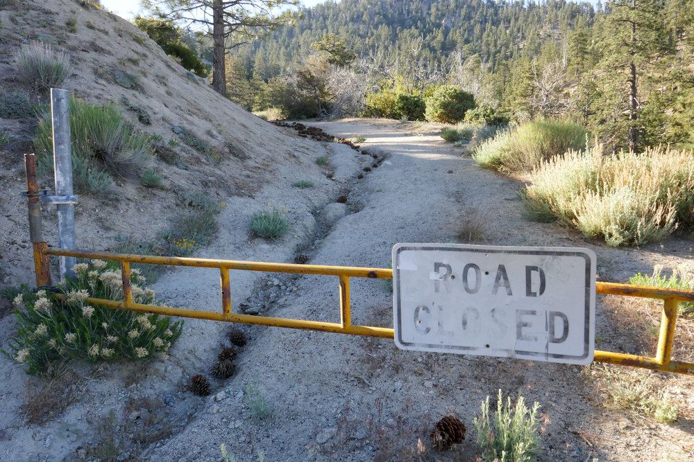 We parked our car in the lot at Angeles Crest Mile Marker 54.10. There's a road where the PCT crosses that eventually splits off in the direction we wanted to go.