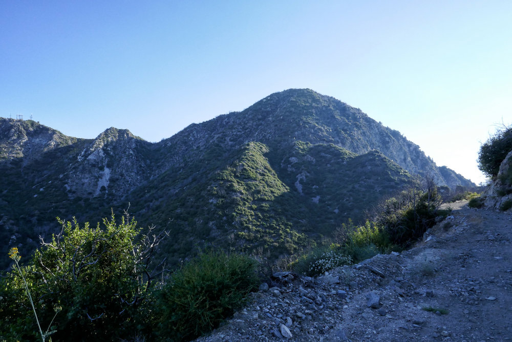 View of San Gabriel Peak from Mount Lowe Road.