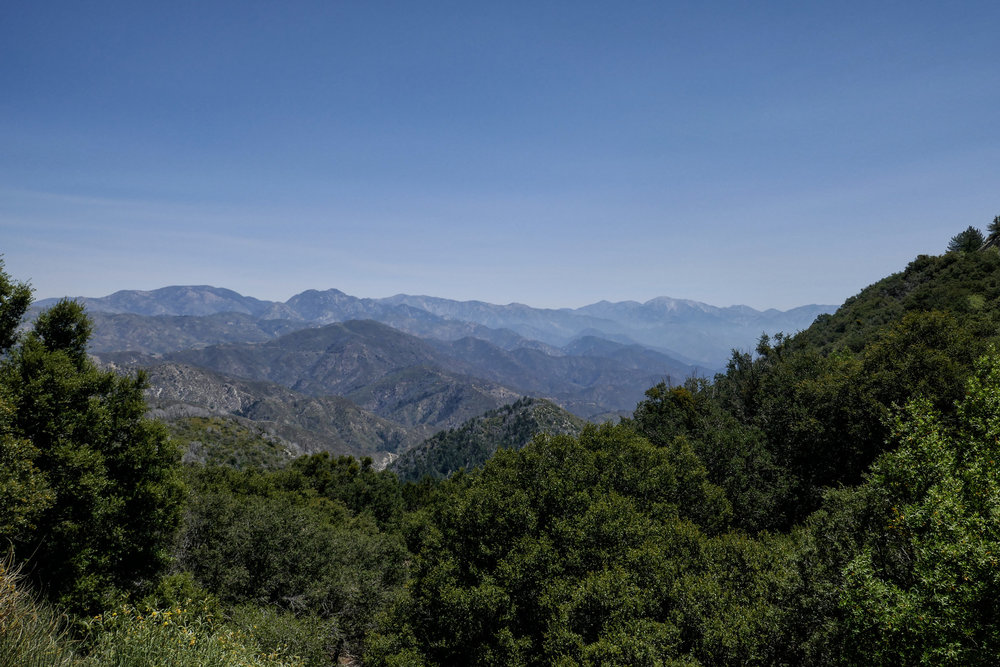From Eaton Saddle where we parked our car you can see many peaks of the Angeles National Forest; Waterman Mountain, Mount Sally, Mount Baden-Powell, South Mount Hawkins, Wright Mountain, Pine Mountain, Mount San Antonio, Telegraph Peak, Big Horn Peak.