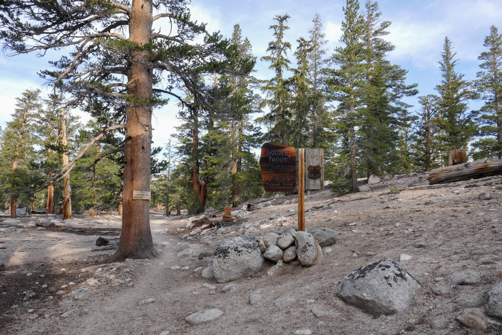 Heading into the Golden Trout Wilderness.