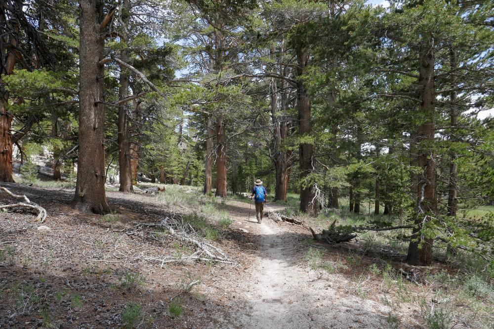 Enjoying the hike back.