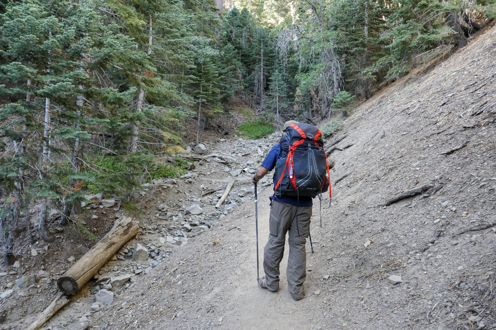 The Blue Ridge Trail was a great starting point to test our new packs and added weight. The trail is two miles to the top of Blue ridge and offers some altitude as well as about 1,000' of elevation gain.