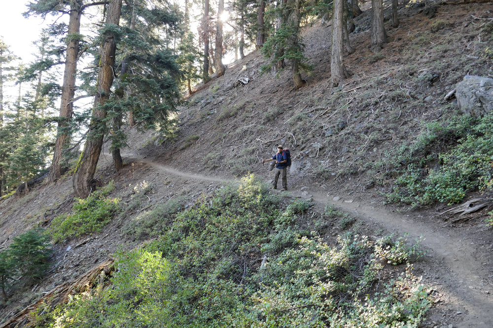Here you can see how the path is nicely buffed out. A great place to practice without having to worry about scree, and the incline is not too steep.