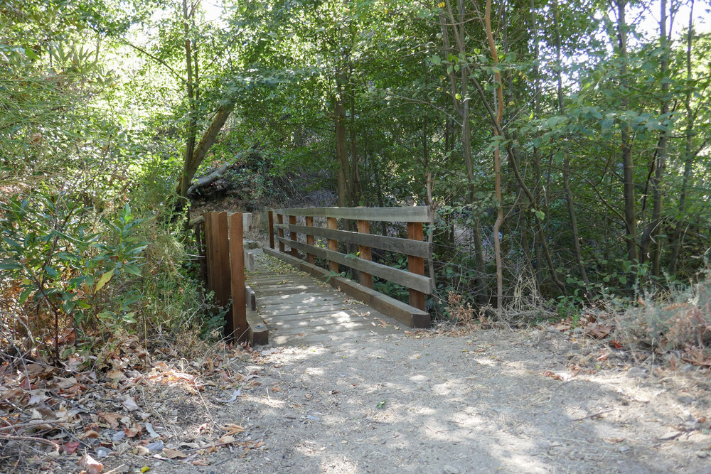 I walked around the camp a bit to explore the area and found this bridge. After consulting my map, I learned that this trail would take us all the way up to Eaton Saddle.