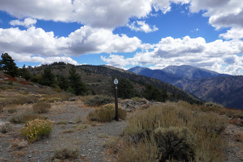 We hiked some of the PCT in Wrightwood from Inspiration Point before making camp.