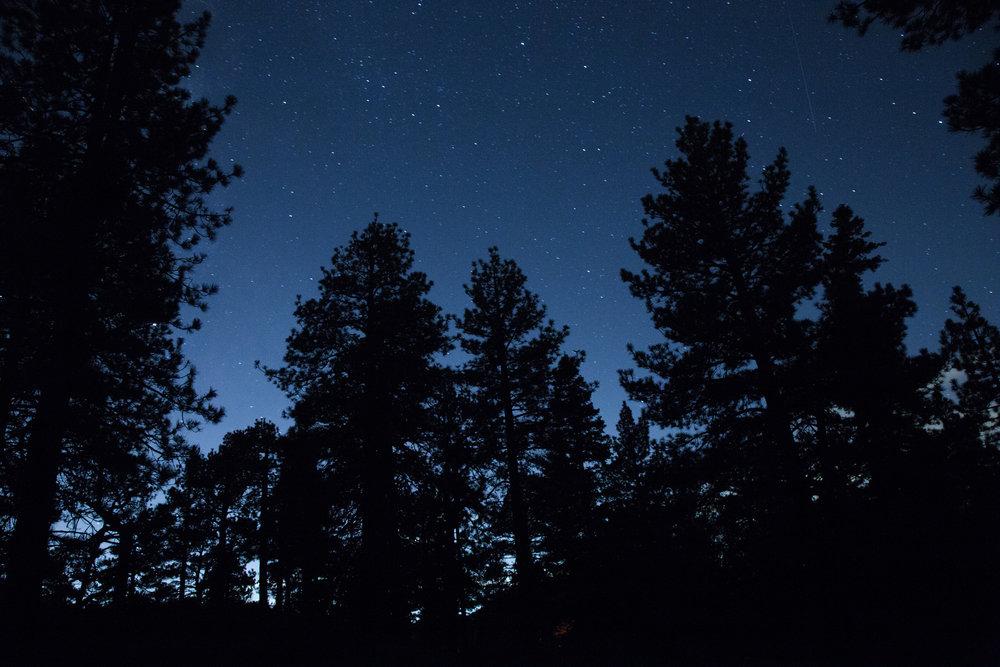The Nightsky.