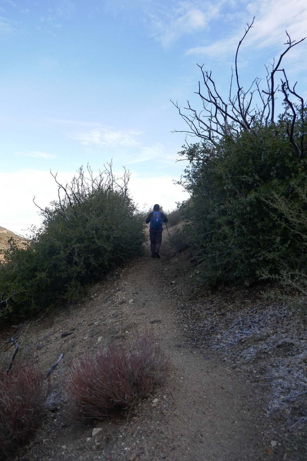 Heading up to the Pacifico Mountain campground on the Pacific Crest Trail.