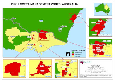 1.   RED: Phylloxera Infested Zone (PIZ) known to have phylloxera     2.   GREEN: Phylloxera Exclusion Zone (PEZ) known to be free from phylloxera      3.   CREAM: Phylloxera Risk Zone (PRZ) phylloxera status unknown (but never detected)