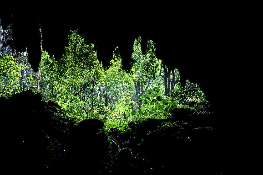 Cuevas del río Camuy