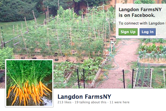Langdon Farms