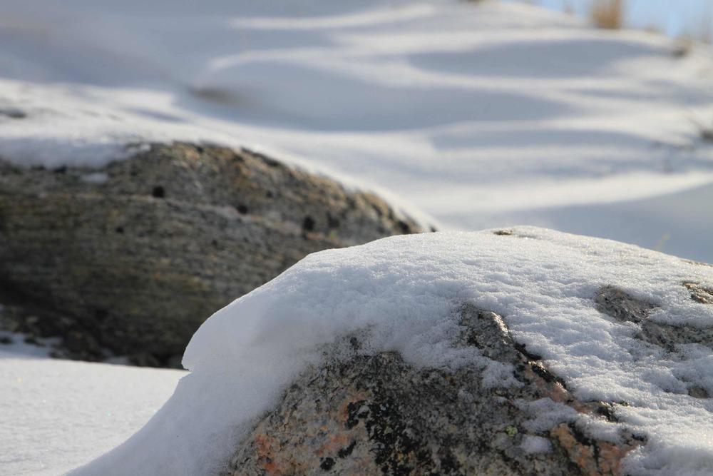 snow on stone.jpg