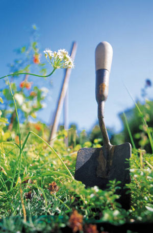 They only differences between a painter's brush and a gardener's trowel are the materials used to make them.