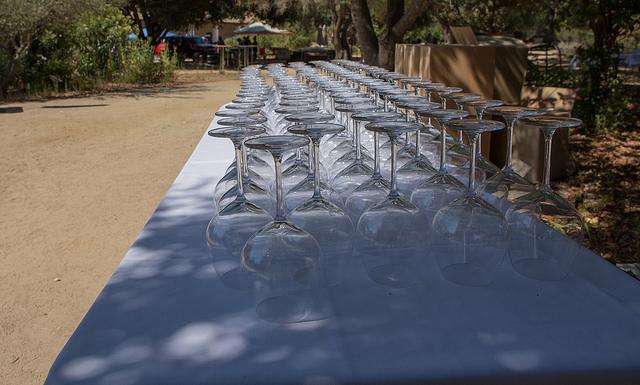 W&F Glasses.jpg