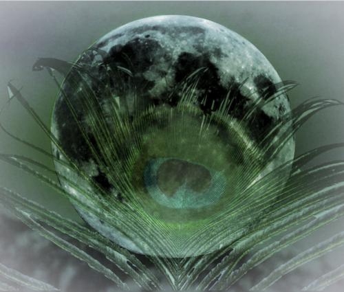 Nieuwe Maan Ontwaken.png