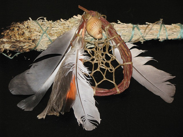 "A sage stick and a dream catcher.  Both tools to improve your psychic abilities and experiences. Find more at ""Herbs to Improve Your Psychic Abilities"" http://www.earthenergyhealings.com/"