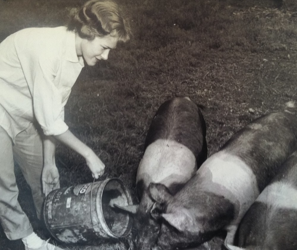 Mom doesn't have to call the pigs more than once for dinner.