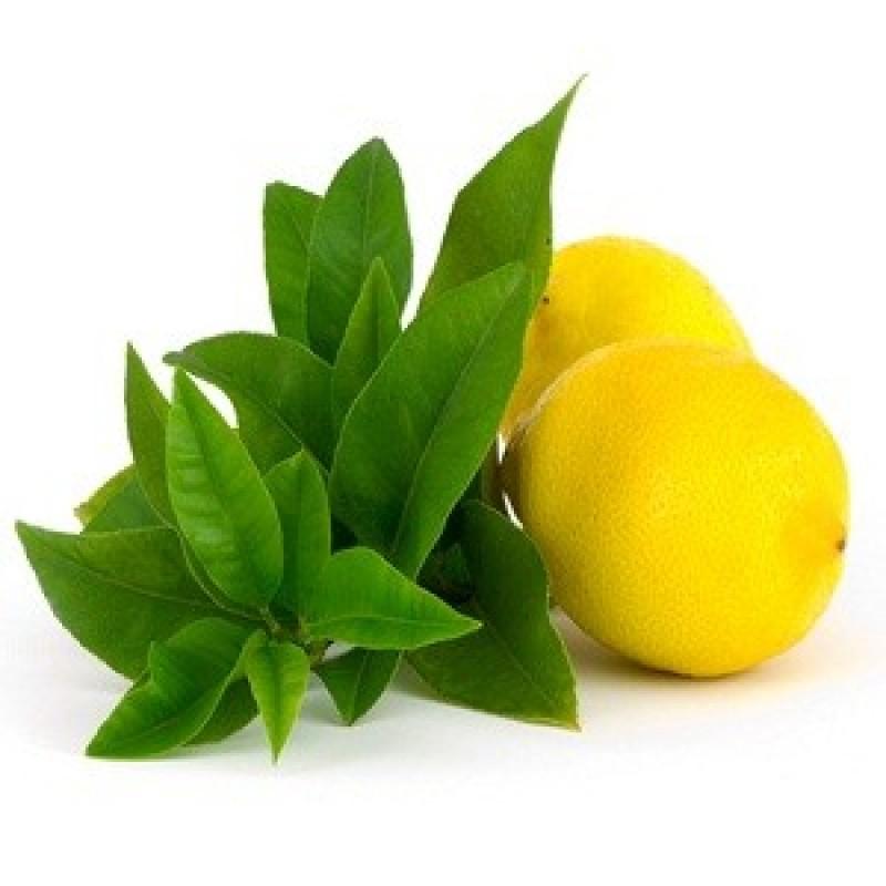 Lemon verbena Essential oil-800x800.jpg