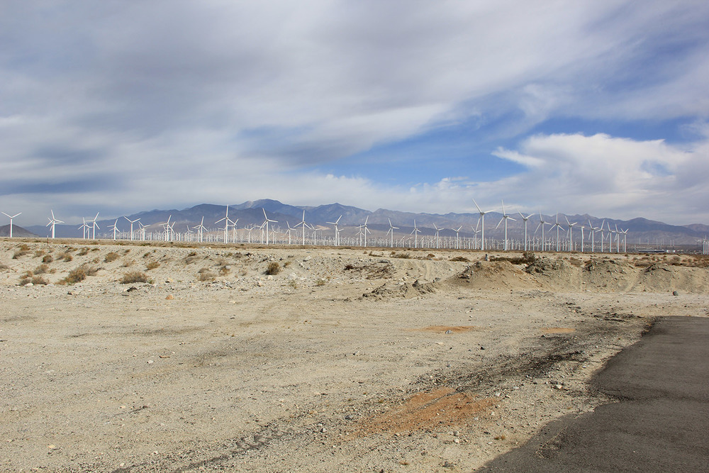 Windmill farm near Palm Springs, ©2015 Lauren Braun