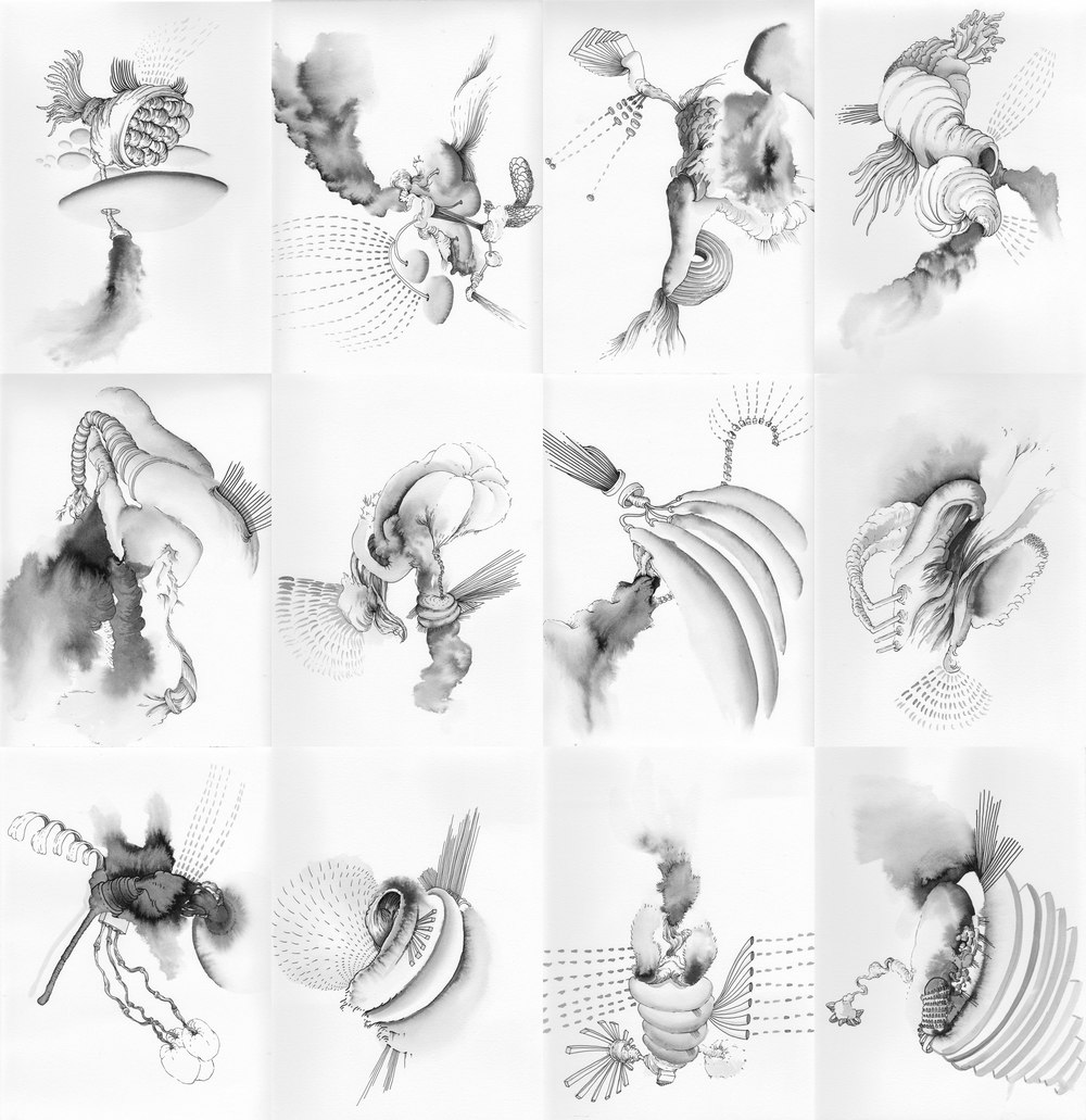 A series of 12 ink drawings, 2013  8x10 inches each