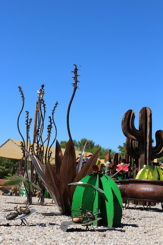Metal plants loya s courtyard