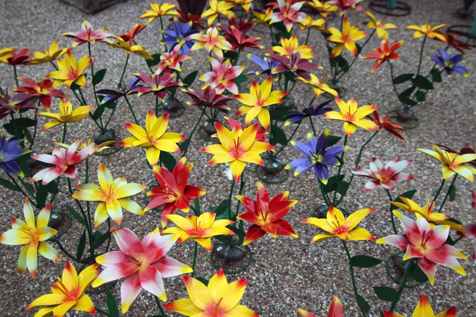 Garden Plants And Flowers Flower Dandelion Perennial