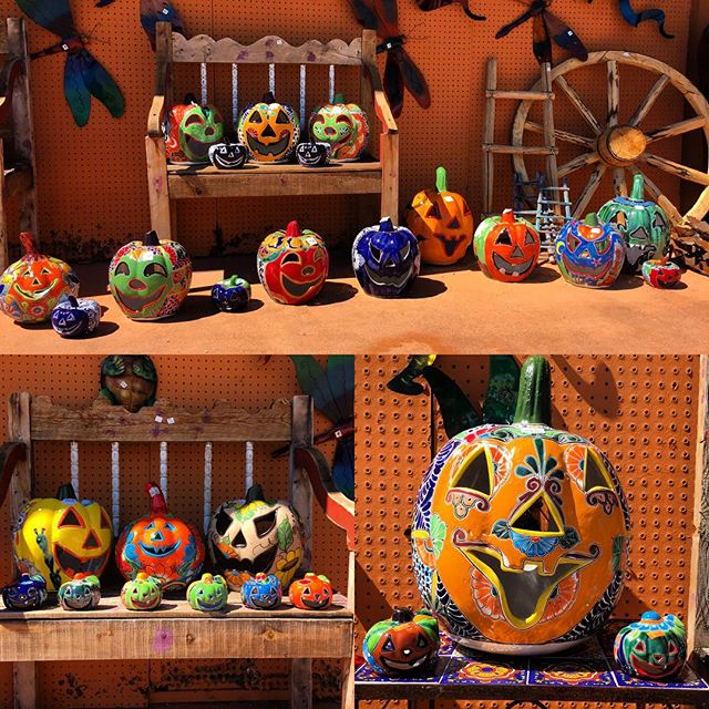 New Talavera pumpkins are in! Lots of new size and color combinations. 😍😍😍