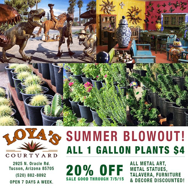 Summer Blowout Sale! $4 1 Gallon Shrubs and Cactus. 20% off all metal art, metal statues, tala vera & furniture. Sale good through 7/5/2015 #buylocal #instagramaz #whyaz  #locallyowned  #az365 #instaaz #igerstucson #tucson #pottery #metal #art #sculpture #fountain #landscaping #decore #talavera #tucson #greenvalley #orovalley #igersaz #arizona