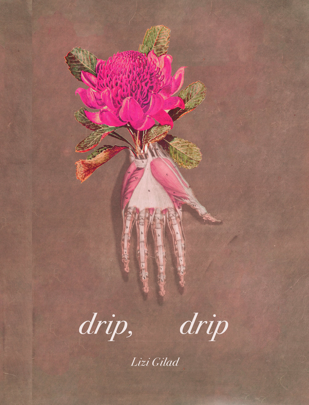 Cover art + interior design for Lizi Gilad's  drip, drip  ( BOAAT Press , 2016)   Read in full  here .