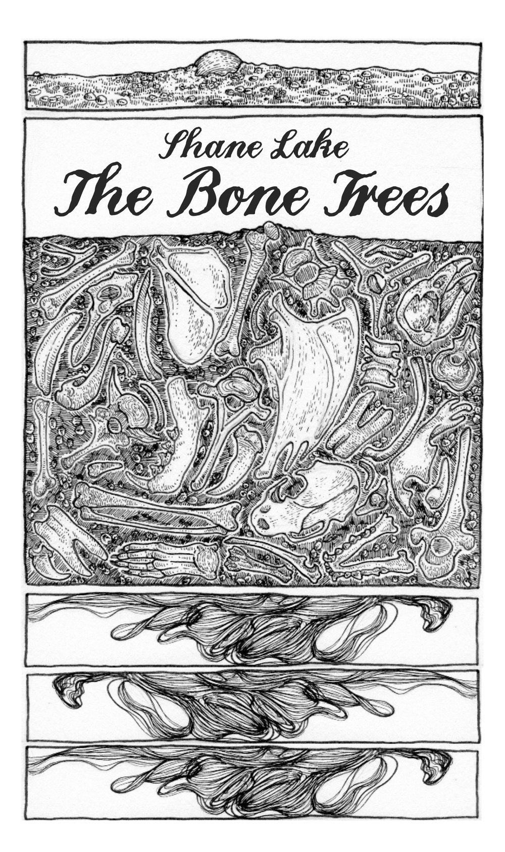 Cover layout + interior design for Shane Lake's  The Bone Trees  ( BOAAT Press , 2017). Illustrations by Meara Louise. Read in full  here .