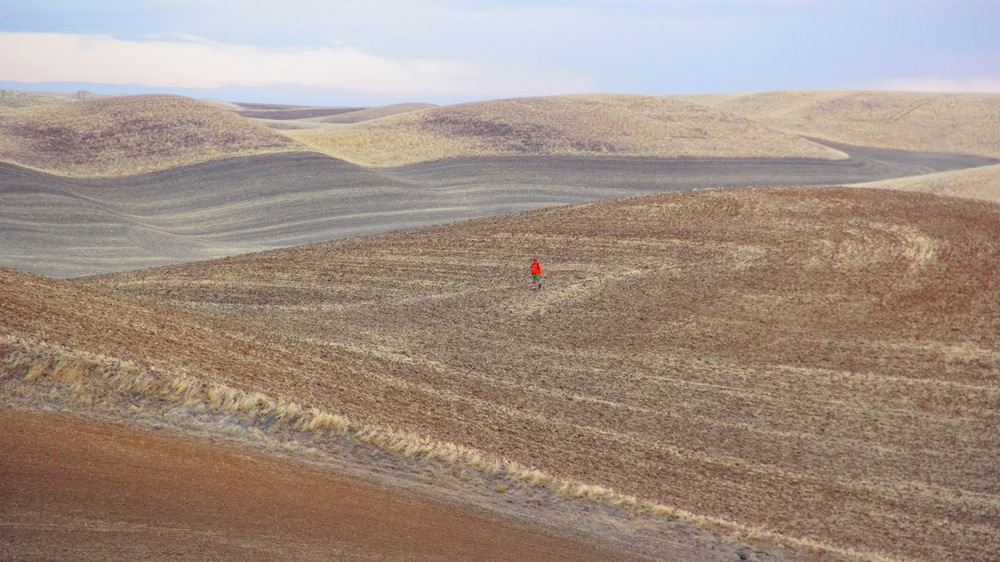 Ryan Graves walking the hills of the Palouse.