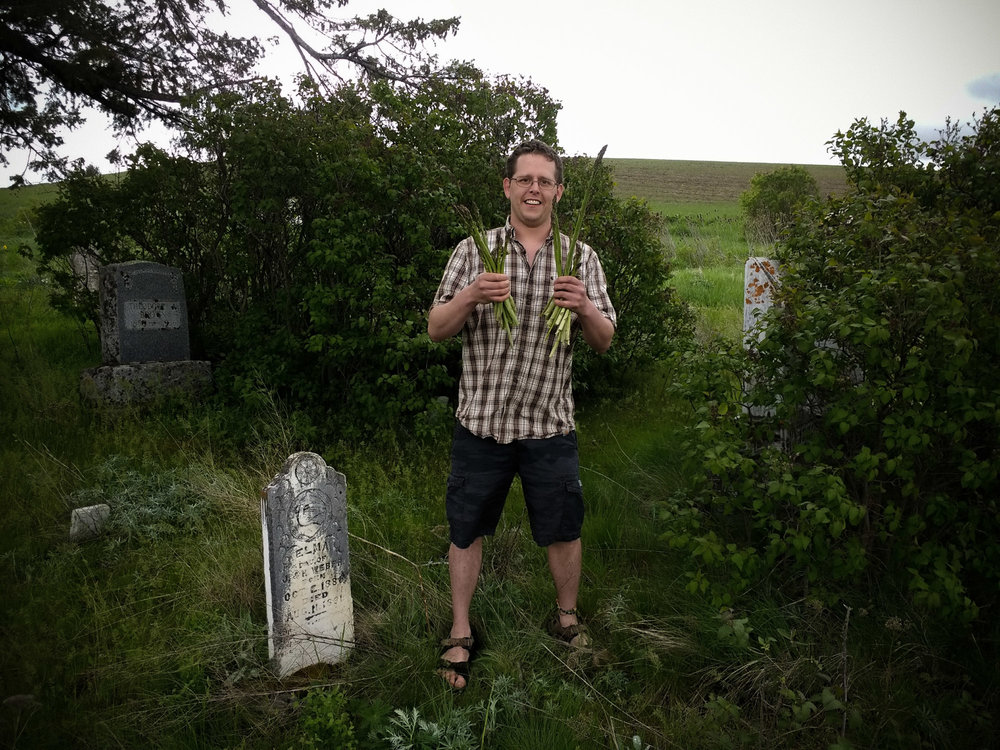 Ryan Graves holding wild asparagus in Clinton Cemetery