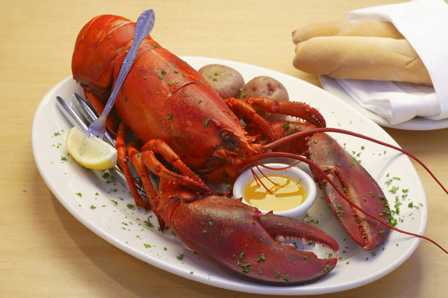 Dragos-lobster.jpg