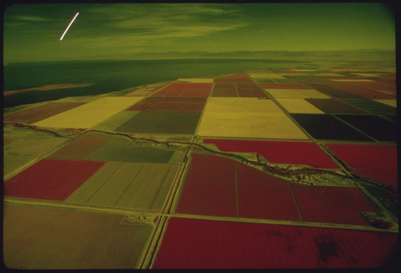 FIELDS IN CALIFORNIA'S IMPERIAL VALLEY IRRIGATED WITH COLORADO RIVER WATER. EPA PHOTO COURTESY OF THE NATIONAL ARCHIVES AND RECORDS SERVICE.