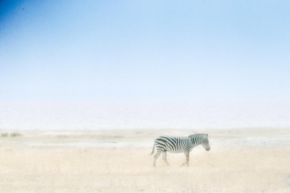 Africa2013_00778-Edit.jpg