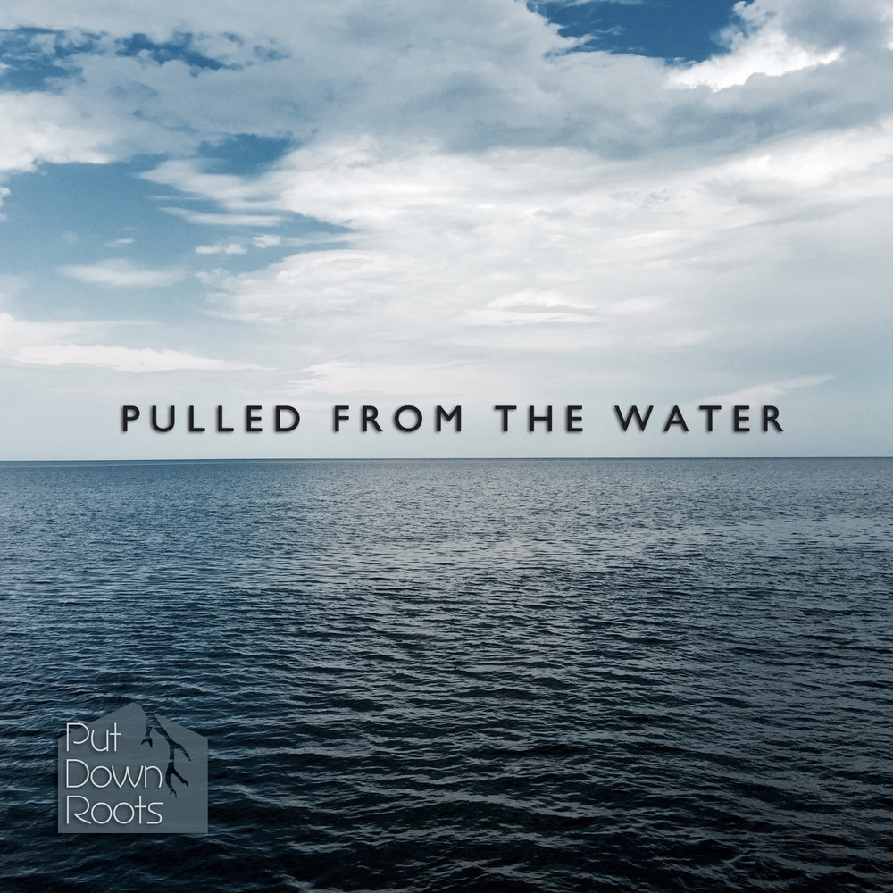 Pulled from the Water Cover Art 2.jpg