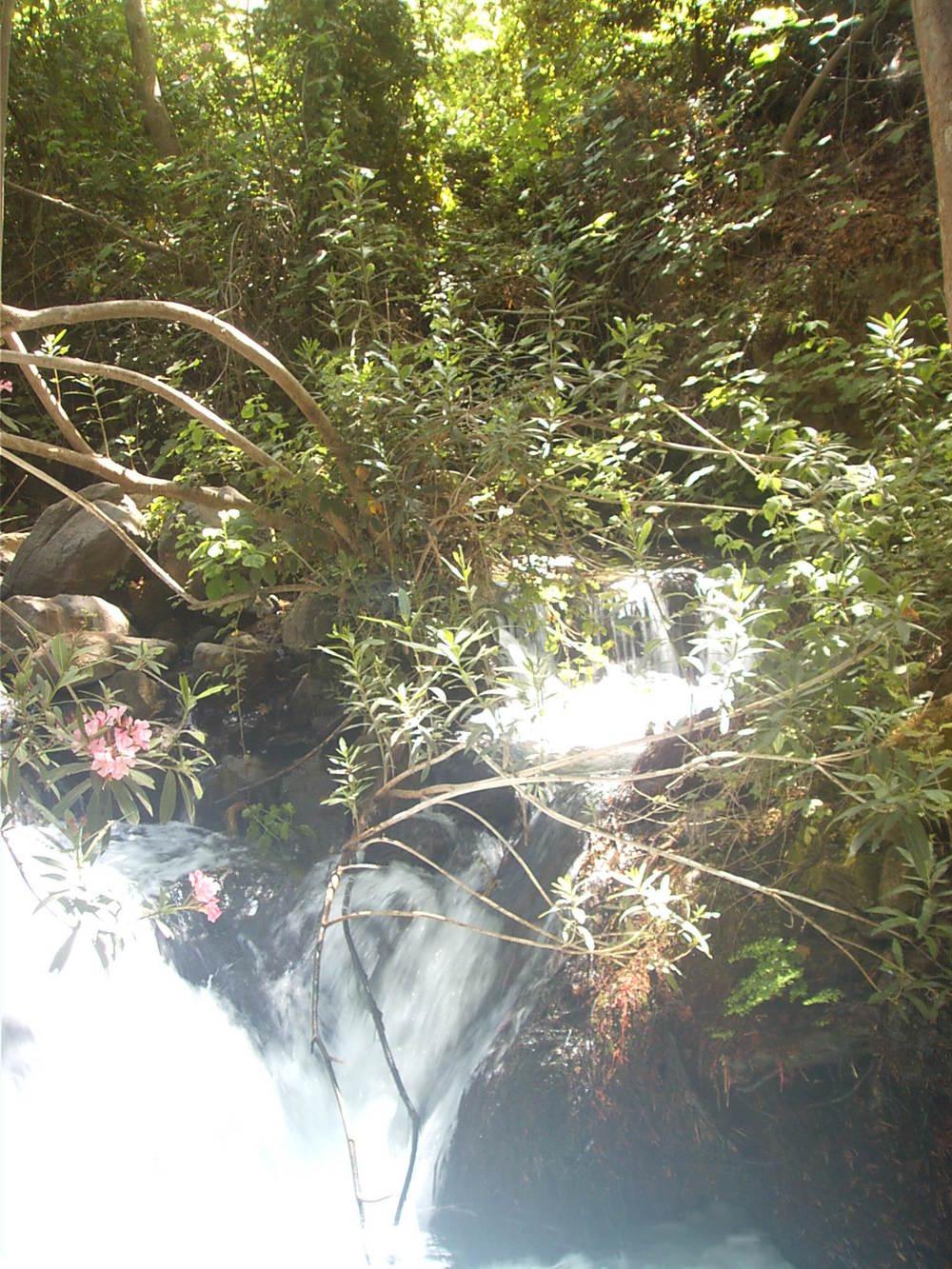 207 Banyas Waterfalls 2.jpg