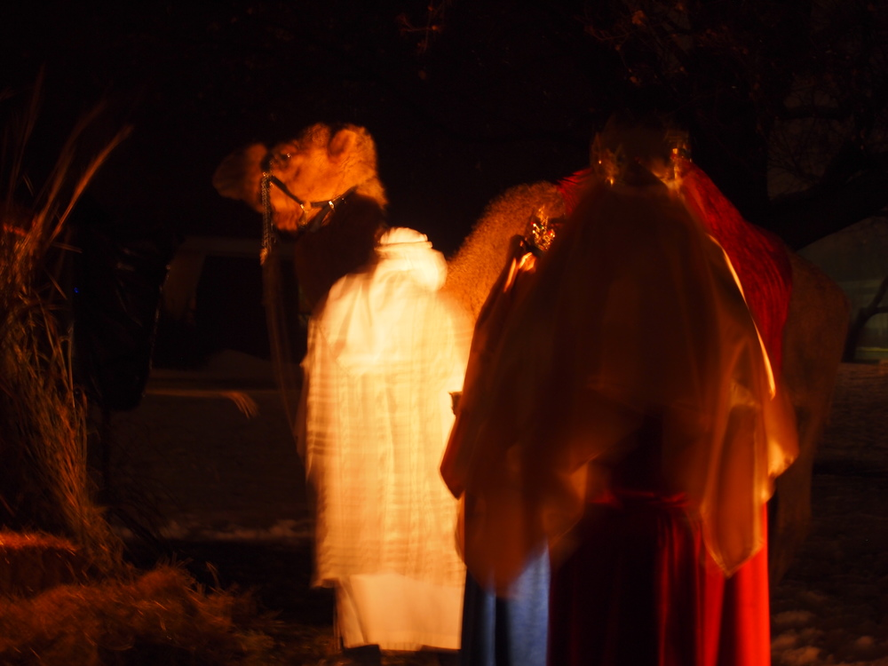 Presbyterian-Church-of-Paltine-Live-Nativity-2013-7.JPG