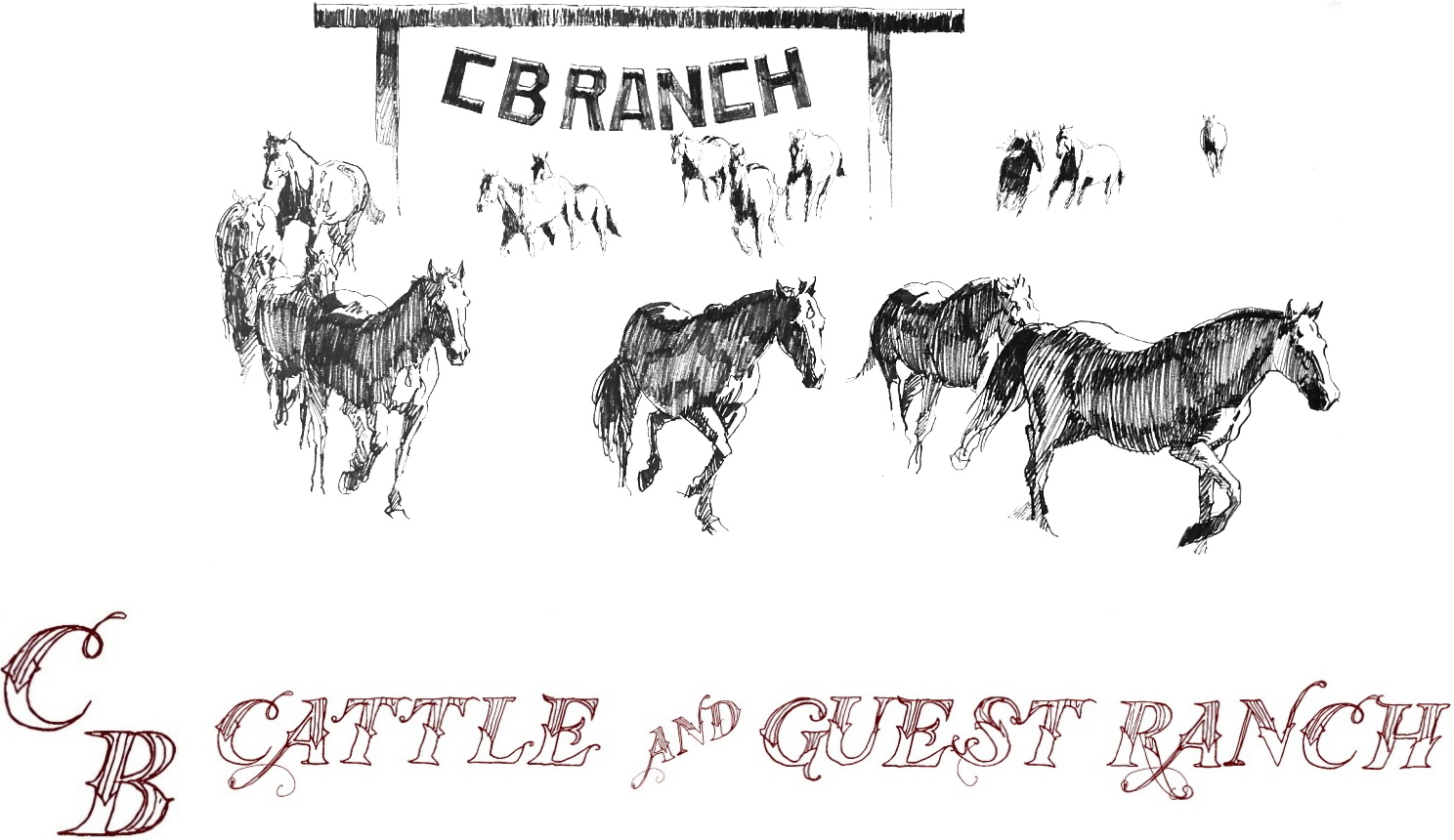 C B Cattle & Guest Ranch