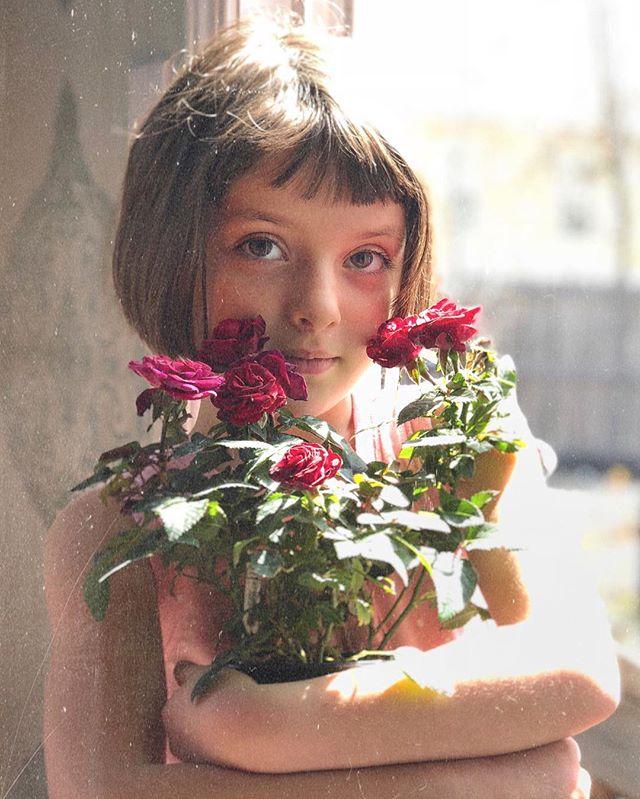 Lille Roses.jpg