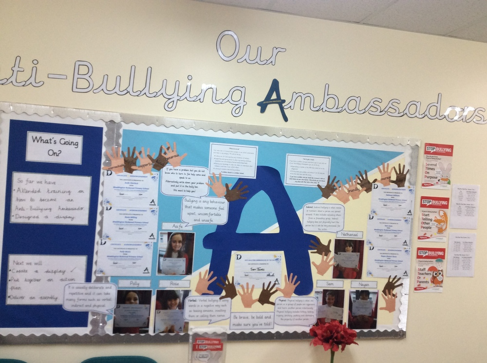 Anti-Bullying Ambassador Notice Board