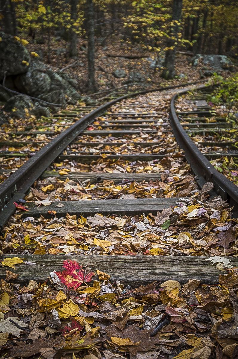 Train_Tracks.jpg