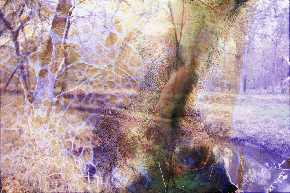 Soaked Film_71.jpg