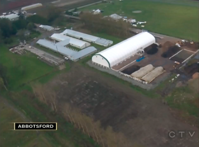 Click the image to watch the video of Net Zero Waste Abbotsford in CTV News