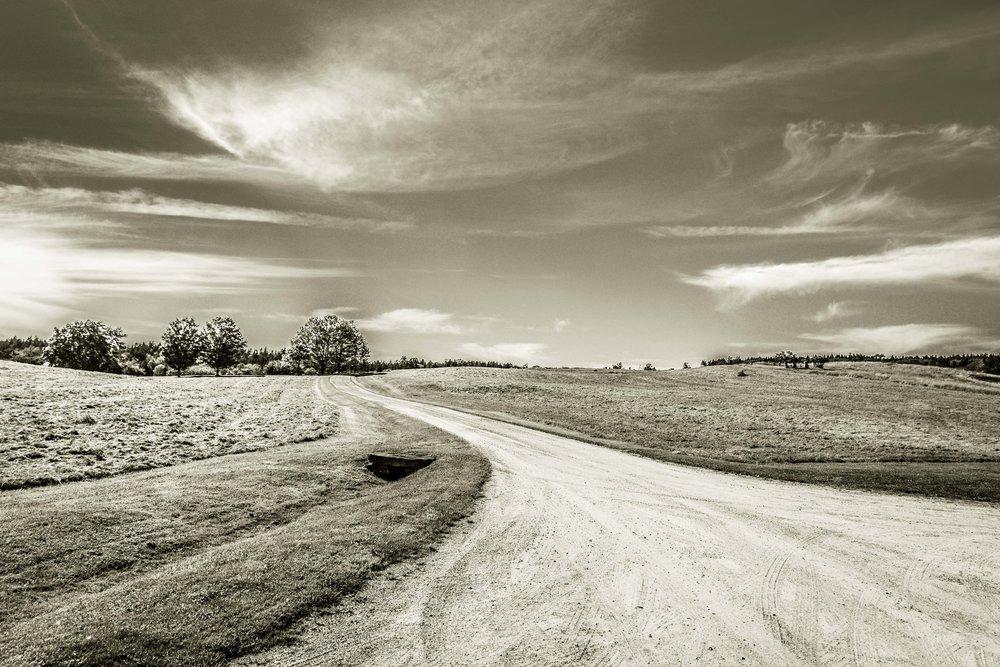 Porter_Photo_Landscape-4.jpg