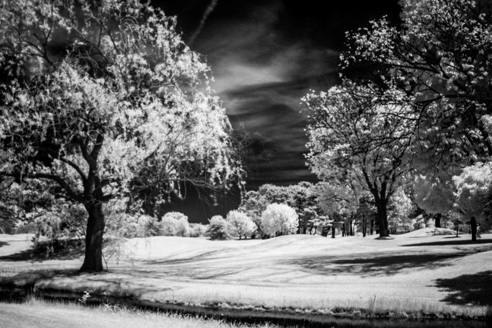 Porter_Photo_Infrared-2.jpg