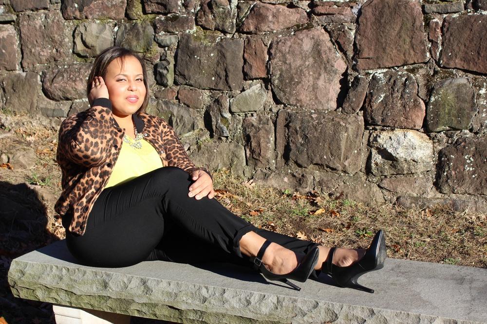 leopard bench.jpg