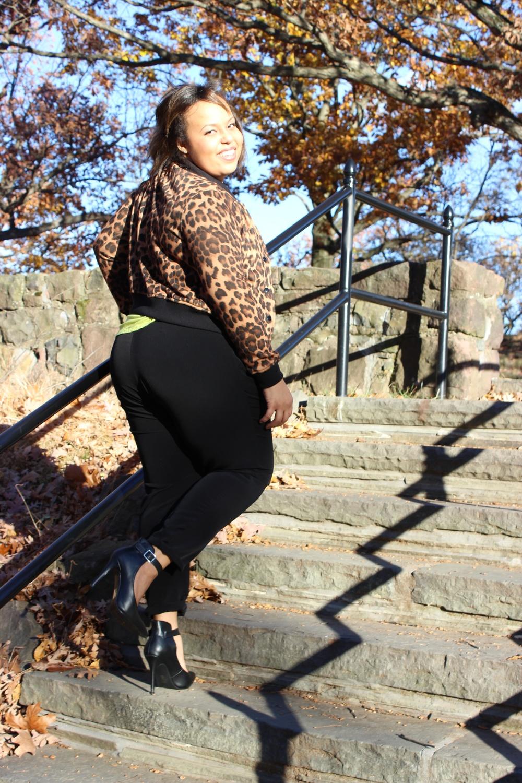 leopard climbing stairs.jpg