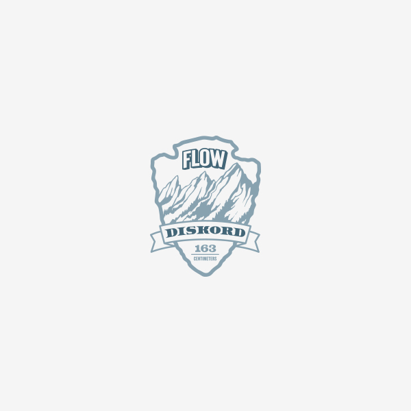 evrybdy logo design branding seattle flow discord corin mcdonald